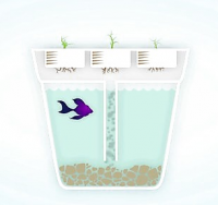 Back to the Roots Aquafarm tank owners community.   About:   The Aquafarm uses aquaponics to filter natural waste to feed plants which in turn clean the water for the fishies. A...
