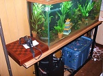 """Here's the tank sitting on the stand with the equipment underneath.  I build the stand from 1 1/2"""" square steel tubing."""