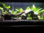 20G Long updated 6/3/2013