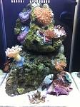 2.5 Gal Fluval Peco Reef