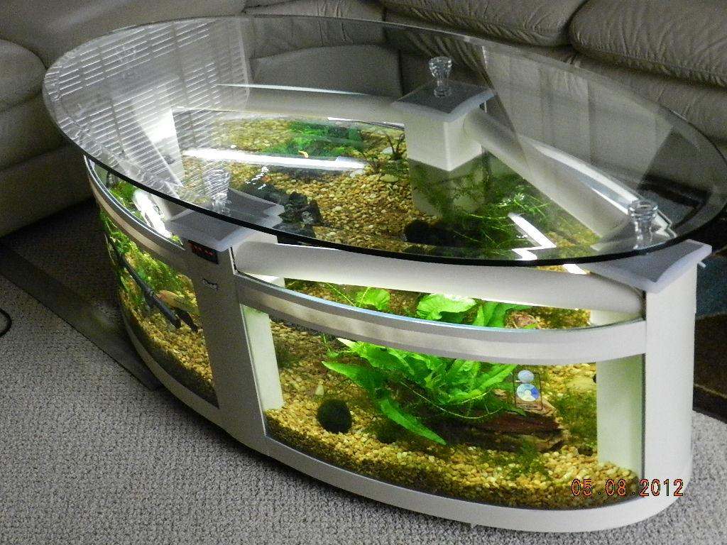 Fish Tank Coffee Table Coffee Table Tank Aquarium Advice Forum