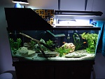 the 55g at completion