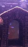 Alcarin's aquarium
