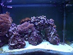 Right Side of Tank