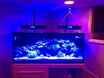 New LEDs