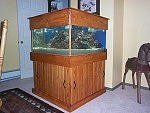 115 gallon 3x3x1.5 feet  Home-made stand, canopy, lighting and 29 gallon refugium