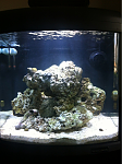 FTS from the begining. March 2012