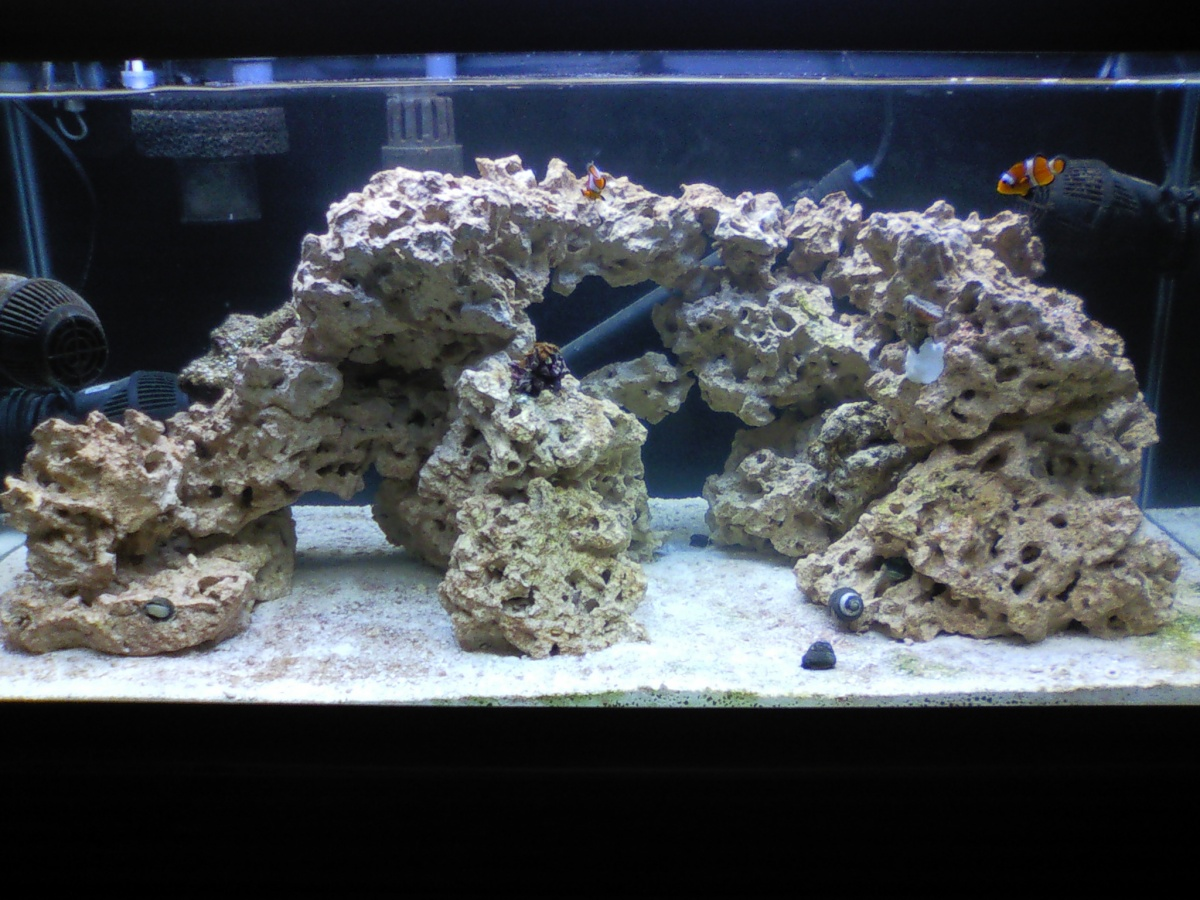 New to sw 40br fowlr build page 7 aquarium advice for Fish tank rock cleaner