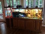 Ike and Tina's aquariums