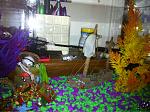 My fish and stuff