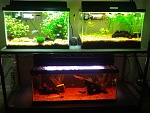 3 tanks after serious improvements.