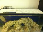 38 Reef