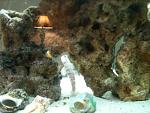 My salt tank