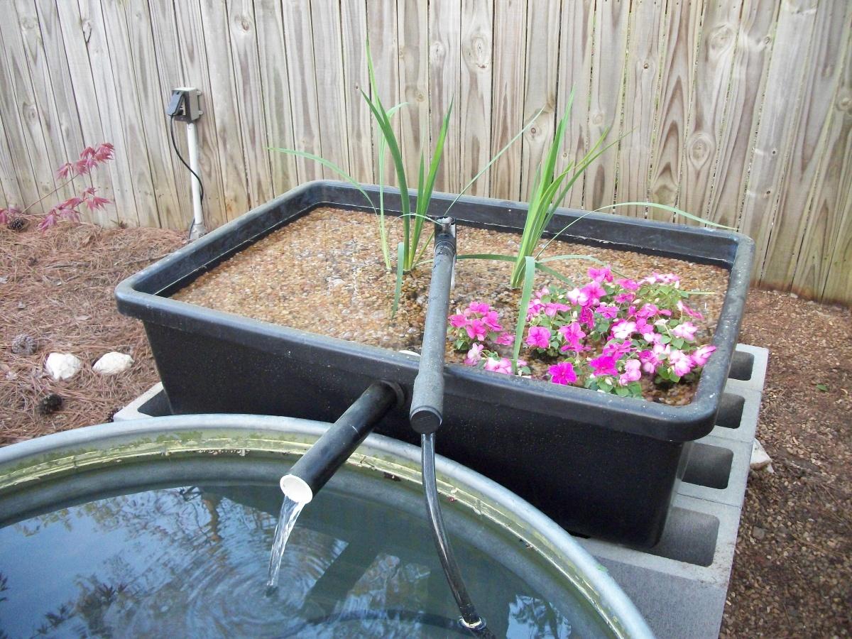 Bog filter build aquarium advice aquarium forum community for Diy koi pond filter design
