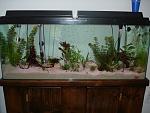 New 50 Gal Freshwater