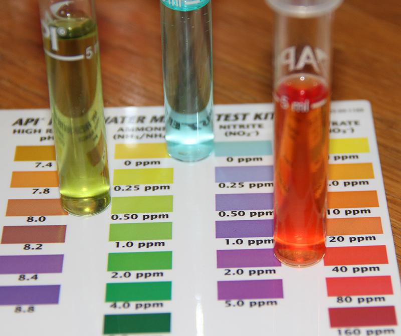 api ammonia test instructions