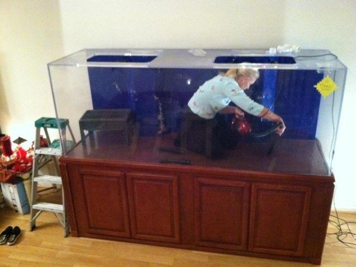 December 2012 totm swscj 39 s 450 gallon reef aquarium advice for How to set up fish tank